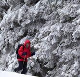 Wycieczkowicz iść na skłonie z spadać śniegiem w śnieżystym lesie obrazy stock