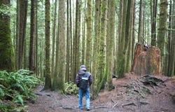 Wycieczkowicz na zachodnie wybrzeże śladzie, BC Zdjęcia Stock