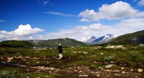 wycieczkowicz Norway Fotografia Stock