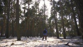Wycieczkowicz z plecaka odprowadzeniem w sosnowym lesie zakrywającym z głębokim śniegiem Zimy aktywność i odtwarzania pojęcie zbiory