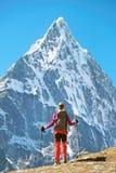 Wycieczkowicz z plecakami dosięga szczyt halny szczyt Succes Zdjęcia Stock