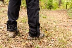 Wycieczkowicz z plecakiem chodzi w jesień lesie obrazy royalty free