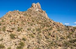 Wycieczkowicze przewodzi w górę pinakla Osiągają szczyt w Północnym Scottsdale Arizona Obrazy Stock