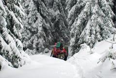 Wycieczkowicze w zim Carpathians górach Ukraina Zdjęcie Royalty Free
