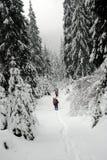 Wycieczkowicze w zim Carpathians górach Ukraina Zdjęcia Royalty Free
