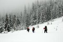 Wycieczkowicze w zim Carpathians górach Ukraina Obraz Royalty Free