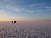 wycieczkowicze zamrażają morze Zdjęcia Royalty Free