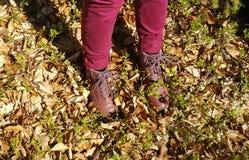 Wycieczkowiczy buty na brud wiosny footpath w lesie na wycieczkować wycieczkę Obrazy Stock