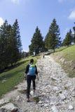 Wycieczkujący †'wycieczkowicze chodzi na podwyżce w halnej naturze na słonecznym dniu fotografia royalty free