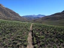 Wycieczkujący ścieżkę Hodgson ` s Osiąga szczyt, uKhahlamba Drakensberg park narodowy obrazy stock