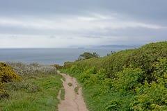 Wycieczkujący ślad między bujny zielenieje krzaki wzdłuż falez howth, Ireland obrazy royalty free