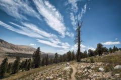 Wycieczkujący ślad w sierra Nevada góry Zdjęcia Stock