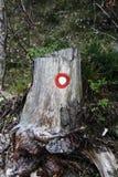 Wycieczkujący symbol, zaznacza poprawnego ślad, malował na starym drzewie obrazy stock
