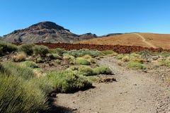Wycieczkujący w Teide parku narodowym w Tenerife wyspach kanaryjska, Hiszpania, Europa Fotografia Stock