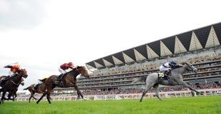 Wyścigi konny Zdjęcia Stock