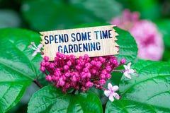 Wydaje niektóre czasu ogrodnictwo w drewnianej karcie zdjęcie stock