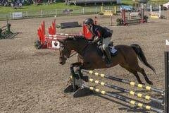 wydarzenia equestrian skoczek Obrazy Royalty Free