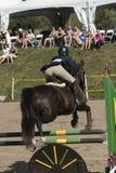 wydarzenia equestrian skoczek Obrazy Stock