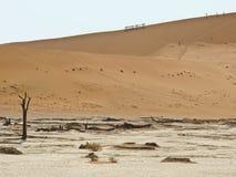 wydmowego namib Namibia krajowy nauktuft parka piasek Zdjęcie Royalty Free