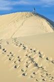 wydmy piasku śmiertelnych do doliny stovepipe wells Zdjęcie Royalty Free