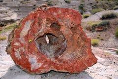 Wydrążenie Kamieniejąca skała fotografia stock