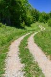 Wygina się droga prowadzi oko w odległość na wibrującym wiosny mornin Fotografia Stock