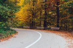 Wyginająca się droga w jesieni Zdjęcia Stock