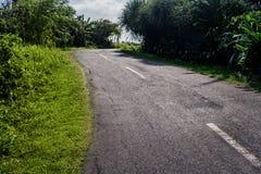 Wyginająca się droga w zwrotnikach Drogowy zwrot w lasu krajobrazie Droga w tropikalnym lesie w świetle słonecznym Fotografia Royalty Free