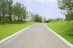 Wyginający się asfaltową drogę w lecie zielenieje na słonecznym dniu Obrazy Royalty Free