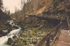 Wyginający się drewniany most z strumieniem w lesie Obraz Stock