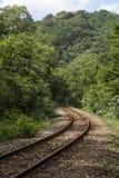 Wyginający się kolejowi ślada w lesie Zdjęcia Royalty Free