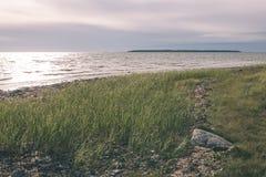 Wygodna plaża morze bałtyckie z skałami i zielonym vegetat royalty ilustracja