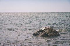 Wygodna plaża morze bałtyckie z skałami i zielonym vegetat zdjęcie stock