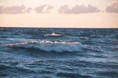 Wygodna plaża morze bałtyckie z wodą rozbija na r Obrazy Stock
