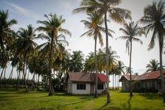 Wygodny dom na wsi i mnóstwo kokosowe palmy blisko oceanu Indonezja, Sumatra obrazy stock
