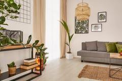 Wygodny dom z dekoracyjnymi houseplants obraz royalty free