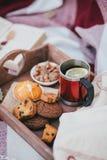 Wygodny jesień pinkin z herbatą i ciastkami Obrazy Royalty Free