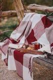 Wygodny jesień pinkin z herbatą i ciastkami Zdjęcia Royalty Free