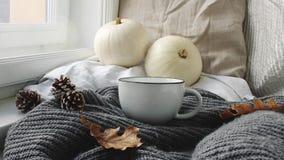 Wygodny jesień ranku śniadanie w łóżkowej scenie Parująca filiżanka gorąca kawa, herbaciany trwanie pobliski okno Spadek, dziękcz zbiory wideo