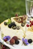 Wygodny lato domu pieczenie Sezonowy jagodowy cheesecake z asortowanymi organicznie ogrodowymi jagodami: rodzynki, agresty Fotografia Royalty Free