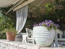 Wygodny podwórze tradycyjna Grecka tawerna, dekorujący z kolorowymi kwiatami w białych glinianych garnkach nad kierowniczą obwies fotografia royalty free