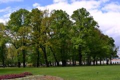 Wygodny przestronny kwadrat z możnymi drzewami między St Isaac ` s katedrą i Neva bulwarem Zdjęcie Royalty Free