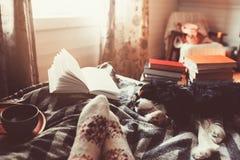 Wygodny zima dzień z filiżanką gorąca herbata, książka i dosypianie pies w domu, fotografia royalty free