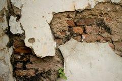 Wygryziona Textured rocznika kolonisty ściana w Azja z cegłą i St obraz stock