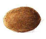 wyizolowana kokosów Obrazy Royalty Free