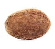 wyizolowana kokosów Zdjęcia Stock