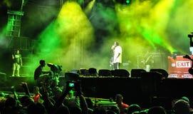 WYJŚCIE festiwal muzyki 2013 Fotografia Royalty Free