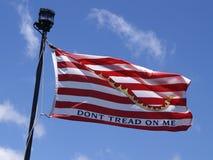 wykładowca flaga ja t stąpanie zdjęcie royalty free