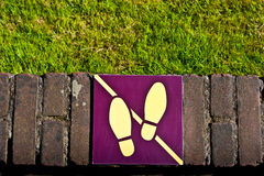 wykładowcy trawy t spacer Obraz Royalty Free