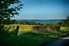 Wykeham Forest,Raptor Viewpoint, Near Pickering North Yorkshire. Wykeham Forest,Raptor Viewpoint, Near Pickering and Scarborough, North Yorkshire. Dramatic views stock photo